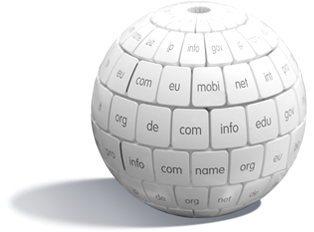 Register domain name