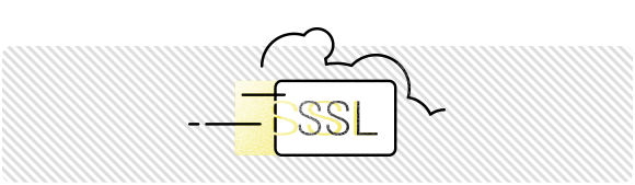 Rapid SSl Wildcard